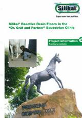 Veterinary Clinics Project Info No.6